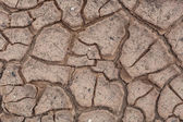 Cracks in dry soil. — Stock Photo