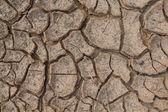 Cracks in dry soil. — Stock Photo