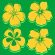 Vector Flower. Hibiscus Collection. Green background. — Stock Vector