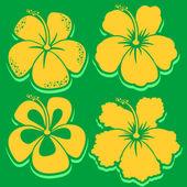Vector Flower. Hibiscus Collection. Green background. — Stock Vector