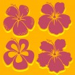 Vector Flower. Hibiscus Collection in red. — Stock Vector