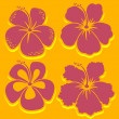 Royalty-Free Stock Vector Image: Vector Flower. Hibiscus Collection in red.
