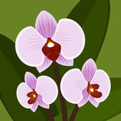 Vector Flower. Orchid in lilac color — Stock Vector