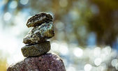 Pile of stones — Stock Photo