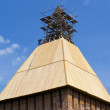 Stock Photo: Roofing on tower