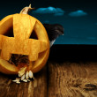 Stock Photo: Collage pumpkin and crow