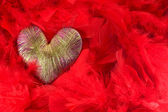 Heart of red feathers — Stock Photo