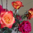 Red Roses - Foto Stock