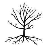 死んだ枝と根の木 — ストックベクタ