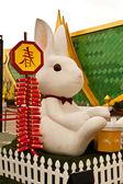 白いウサギ — ストック写真