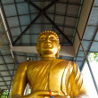 Stock Photo: Golden buddhstatue of thailand