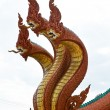 Photo: Dragon