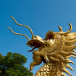Dragon — Stock Photo #34509971