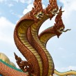 Dragon — Stock Photo #34582891