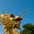Dragon — Stock Photo #34628907