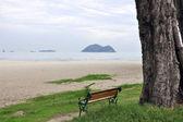 Wood beach chair — Stock Photo