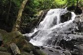 Små vattenfall i djupa skogen på thailand — Stockfoto