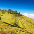 Savanna at Mount Bromo volcanoes — Stock Photo