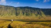 Savanna at Mount Bromo volcanoes in Bromo Tengger Semeru — Stock Photo
