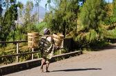 Ative Indonesian Planter in village near Mount Bromo — Stock Photo