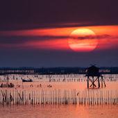 Beautiful sunset, Thailand. — Stock Photo