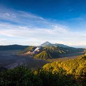 Mount Bromo volcanoes in Bromo Tengger Semeru National Park — Stock Photo