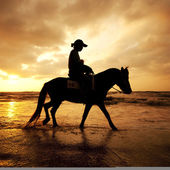 Silhouette man and horse on the beach with sunset sky environmen — Stok fotoğraf