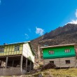 Local house at Chopta valley north Sikkim, India — Stock Photo