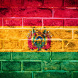 Collection of South America flag on old brick wall texture — Stock Photo