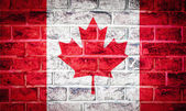 Collection of North America flag on old brick wall texture — Stock Photo