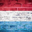 Collection of europeflag on old brick wall texture background — Foto Stock #36446643