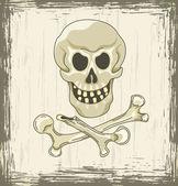 Lebka a zkřížené kosti — Stock vektor