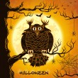 Terrible owl, full moon, bats and spiders — Image vectorielle