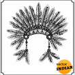 American Indian chief headdress — Foto Stock