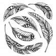 Stock Photo: Black-on-white feather shamcircle ornament