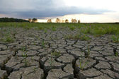 Cracked earth from drought — Stock Photo
