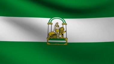 Andalusia flag. — Stock Video #13516996