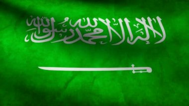 Arabia Saudi flag. — Stock Video