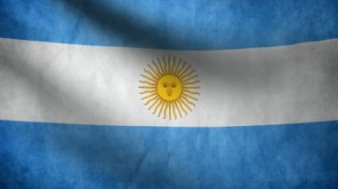 Argentine flag. — Stock Video