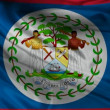 Belize flag. — Stock Video #13542931
