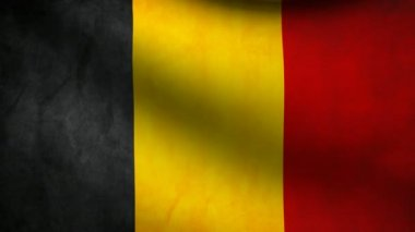 Belgium flag. — Stock Video