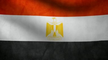Egypt flag. — Stock Video