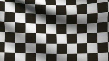 F1 flag. — Stock Video