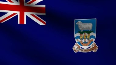 Falkland Islands flag. — Stock Video