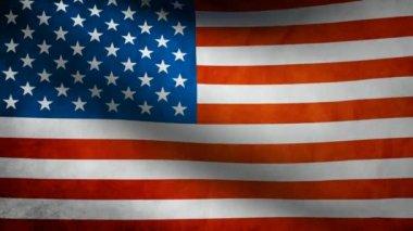 USA flag. — Stock Video