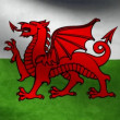 Wales flag. — Stock Video