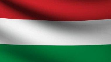 Hungary flag. — Vídeo de Stock