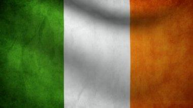 Ireland flag. — Stock Video