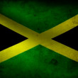 Jamaica flag. — Stock Video