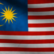 Malaysia flag. - Stock Photo